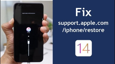 apple support iphone
